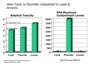 Fluoride and Infertility