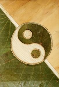 Ying-Yang Balance